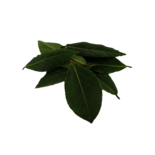 Longos Organic Fresh Bay Leaves
