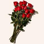 Longos Premium Long Stem Roses Red